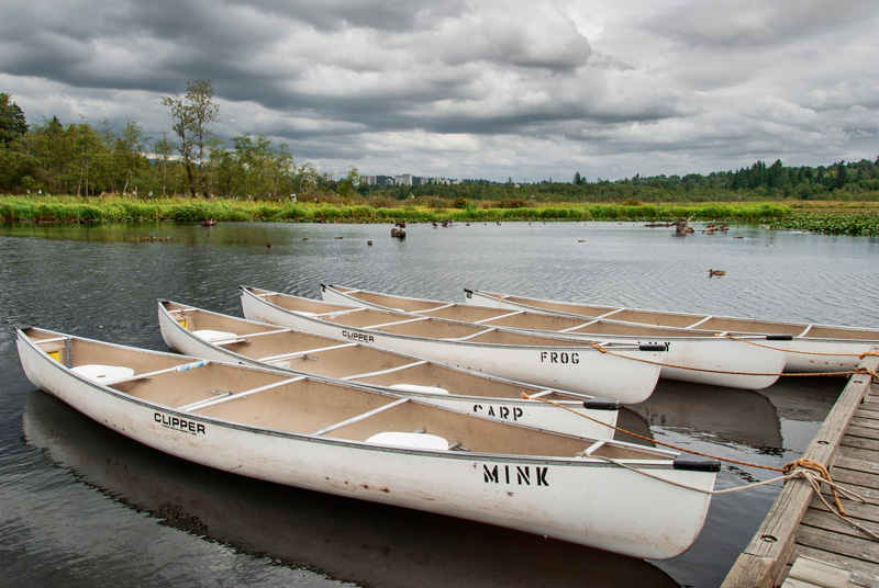 Canoeing is a popular activity in Burnaby Lake Park, B.C.
