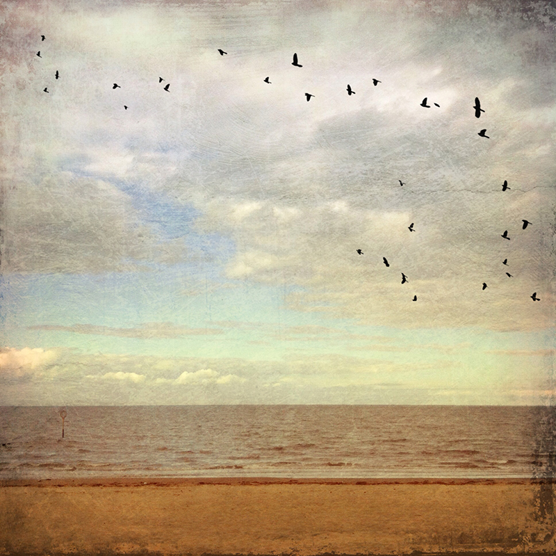 iPhone photograph of Portobello beach, Edinburgh, Scotland,  with DistressedFX texture and flock of birds