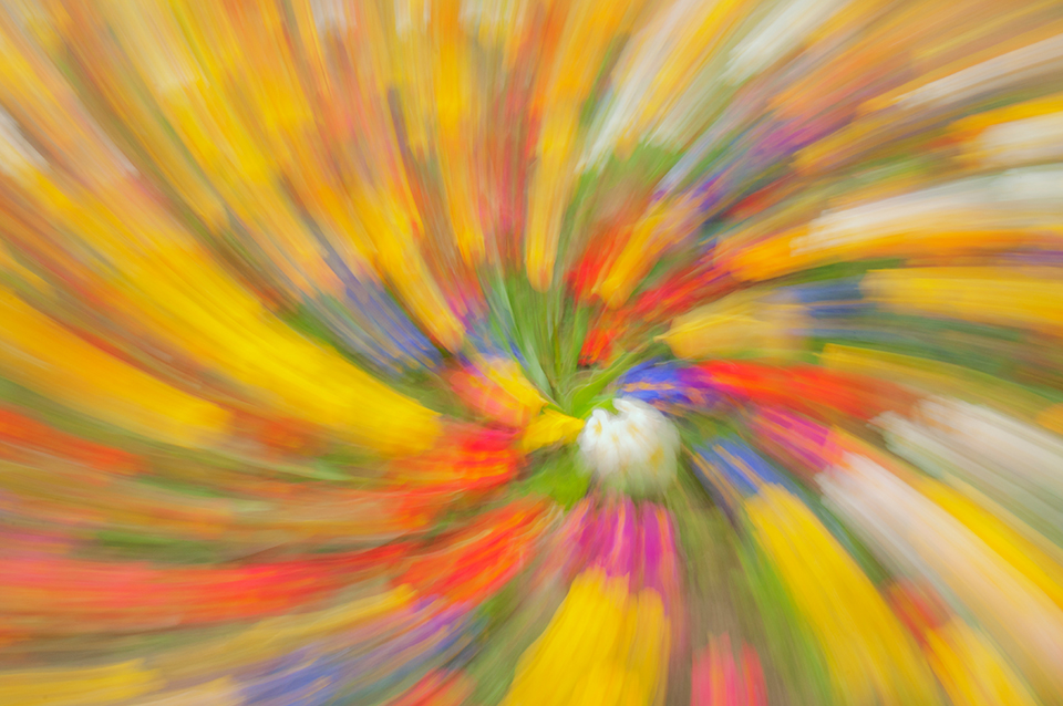 Colour twirl obtained by rating the camera while holding the zoom ring.